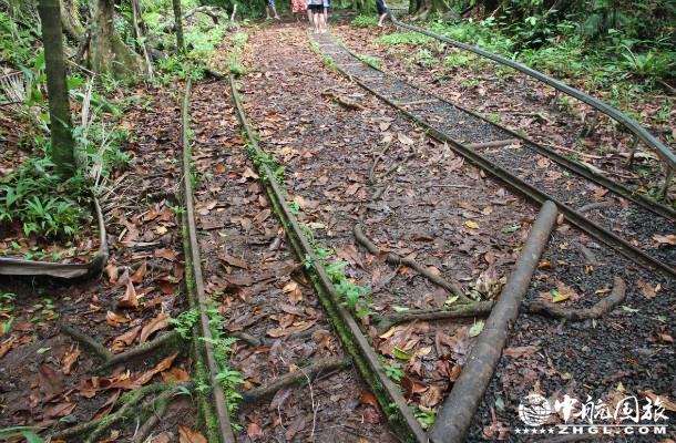 帕劳游记,日本修的铁路运矿产的