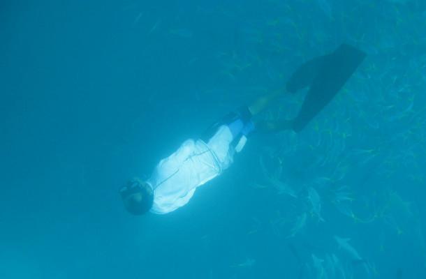 帕劳群岛海岛世界